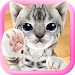Download 3D Cute Cat Live Wallpaper 1.1.0 APK