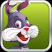 Animal Escape Bunny Run Legend