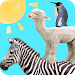 Download Animal Tower  APK