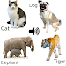 Download Animal sounds 6.9 APK