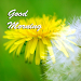 Download Best Good Morning Images 1.04 APK