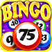 Download Bingo Craze 3.7.0 APK
