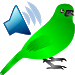 Download Birds Calls Sounds 1.04 APK