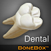 Download BoneBox™ - Dental Lite 1.0 APK