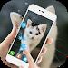 Download Cute cat Live wallpaper 1.1.4 APK