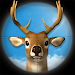 Download Deer Hunting Sniper Shooter 3D 1.1.9 APK