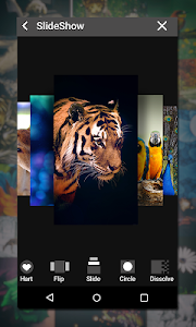 screenshot of Gallery version 2.10