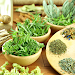 Download Herbs and Use 5.0 APK
