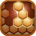 Download Hexa Block Puzzle Game 1.0.3 APK