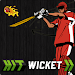 Download Hit Wicket Cricket 2018 - World Cup League Game 7.0.1 World Cup 2018 APK