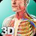 Download Human Anatomy 1.3 APK