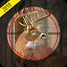 Download Jungle Sniper Hunting 1.3 APK