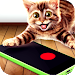 Download Laser game for cats 1.0 APK