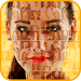Download Mosaic Photo Effects 1.2 APK