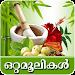 Download Naattuvaidyam-Ottamooli 7.4 APK