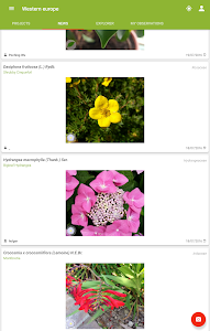 Download PlantNet Plant Identification 2.3.1 APK