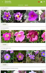 screenshot of PlantNet Plant Identification version 2.1.0