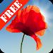 Download Poppy Field Free 3.08 APK