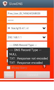 screenshot of VPN Over DNS Tunnel : SlowDNS version 2.6.0