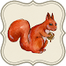Download Squirrel in forest 1.03 APK