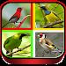 Download Suara Burung Lengkap Full Offline 2.0 APK