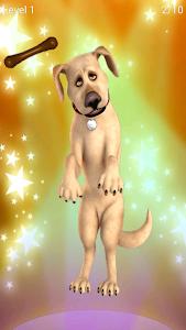 screenshot of Talking John Dog: Funny Dog version Varies with device
