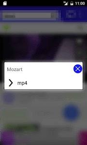 screenshot of Tube Video Downloader HD version 1.45