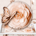 Download White Rose Butterfly Theme 1.1.5 APK