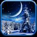 Download Winter Night Wallpaper 1.0.5 APK