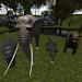 Download Zoo Animals Tour 3D 0.4 APK